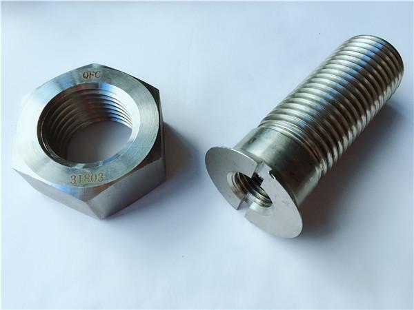 vlastní kovový kovový hardware kolejový šroub a matice